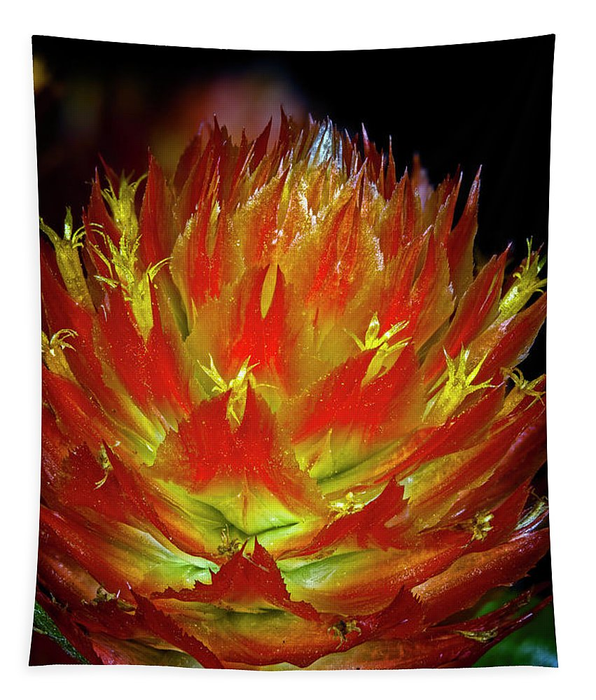 Macro Tapestry featuring the photograph Fireworks by Robert Storost