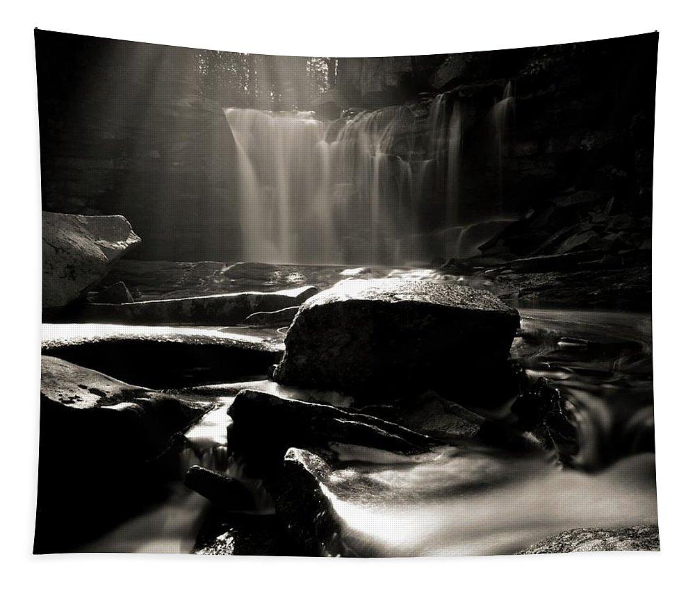 First Light On Elakala Falls Tapestry featuring the photograph First Light On Elakala Falls by Dan Sproul