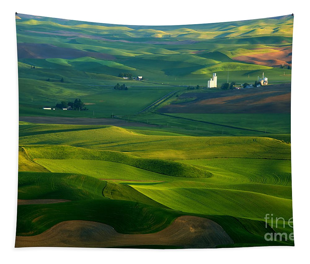 Palouse Tapestry featuring the photograph First Light On The Palouse by Mike Dawson
