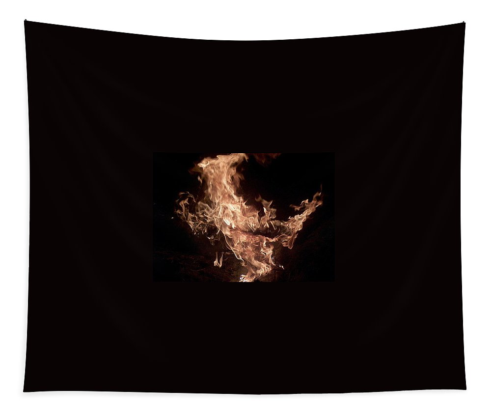 Fire Tapestry featuring the photograph Flaming Pegasus by Lisa Stanley
