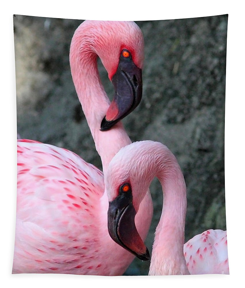 Flamingos Tapestry featuring the photograph Flamingo Love Birds by Carol Groenen