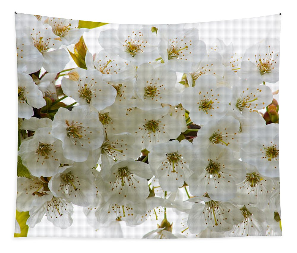 Fleurs Blanches Tapestry featuring the photograph Fleurs Blanches by Tikvah's Hope