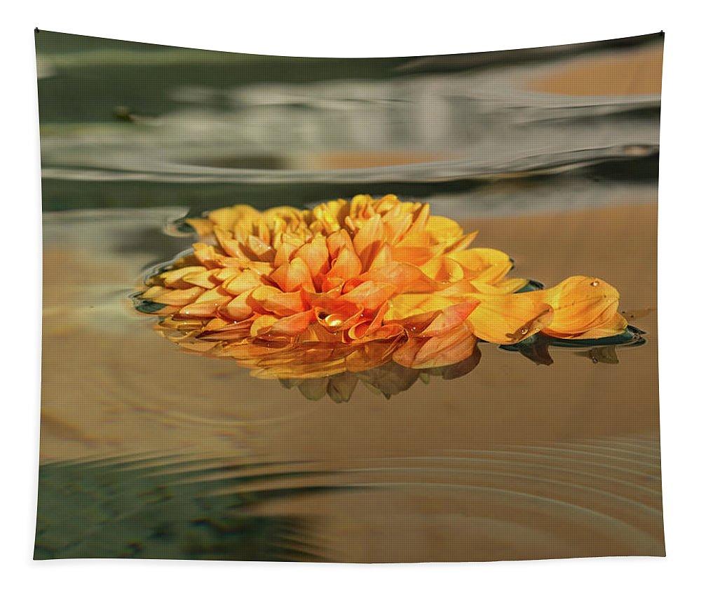 Georgia Mizuleva Tapestry featuring the photograph Floating Beauty - Hot Orange Chrysanthemum Blossom In A Silky Fountain by Georgia Mizuleva