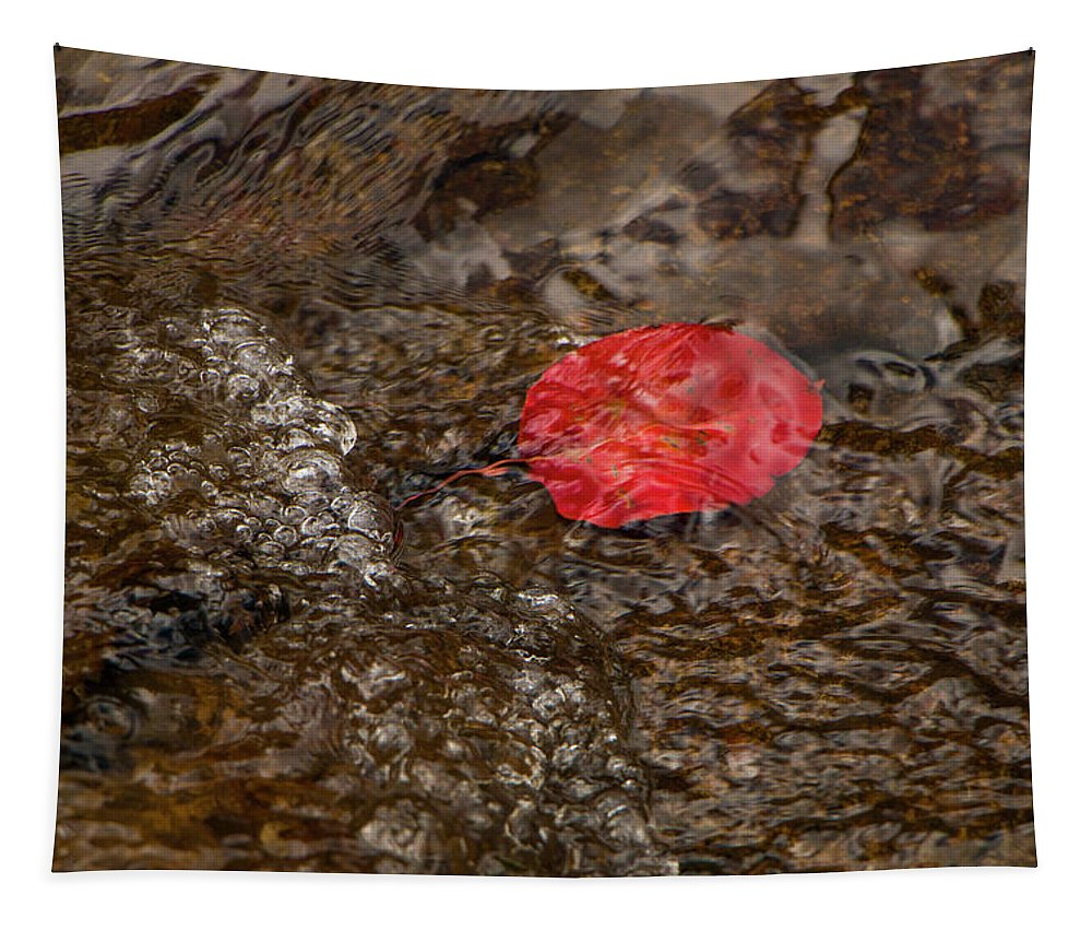 Arizona Tapestry featuring the photograph Floating Downstream by Teresa Wilson