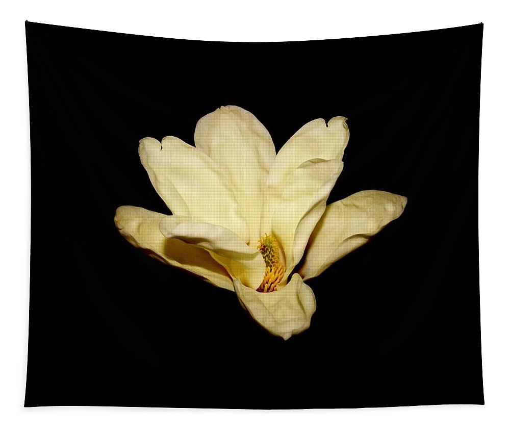 Karen Silvestri Tapestry featuring the photograph Floating Magnolia Flower by Karen Silvestri