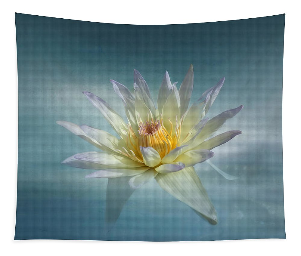 White Flower Tapestry featuring the photograph Floating Water Lily by Kim Hojnacki