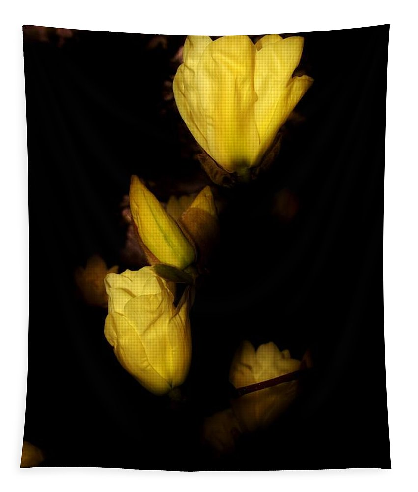 Karen Silvestri Tapestry featuring the photograph Floating Yellow Magnolia Blossoms by Karen Silvestri