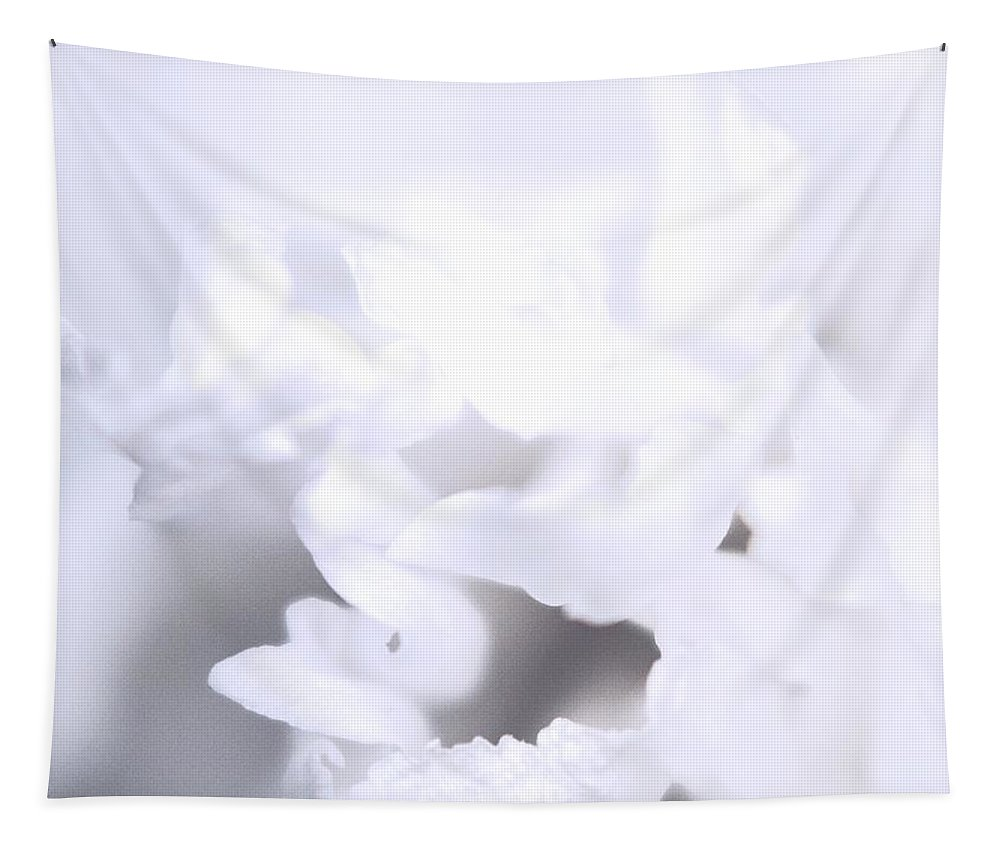 Flowers Tapestry featuring the photograph Floral In White by Paul Wilford