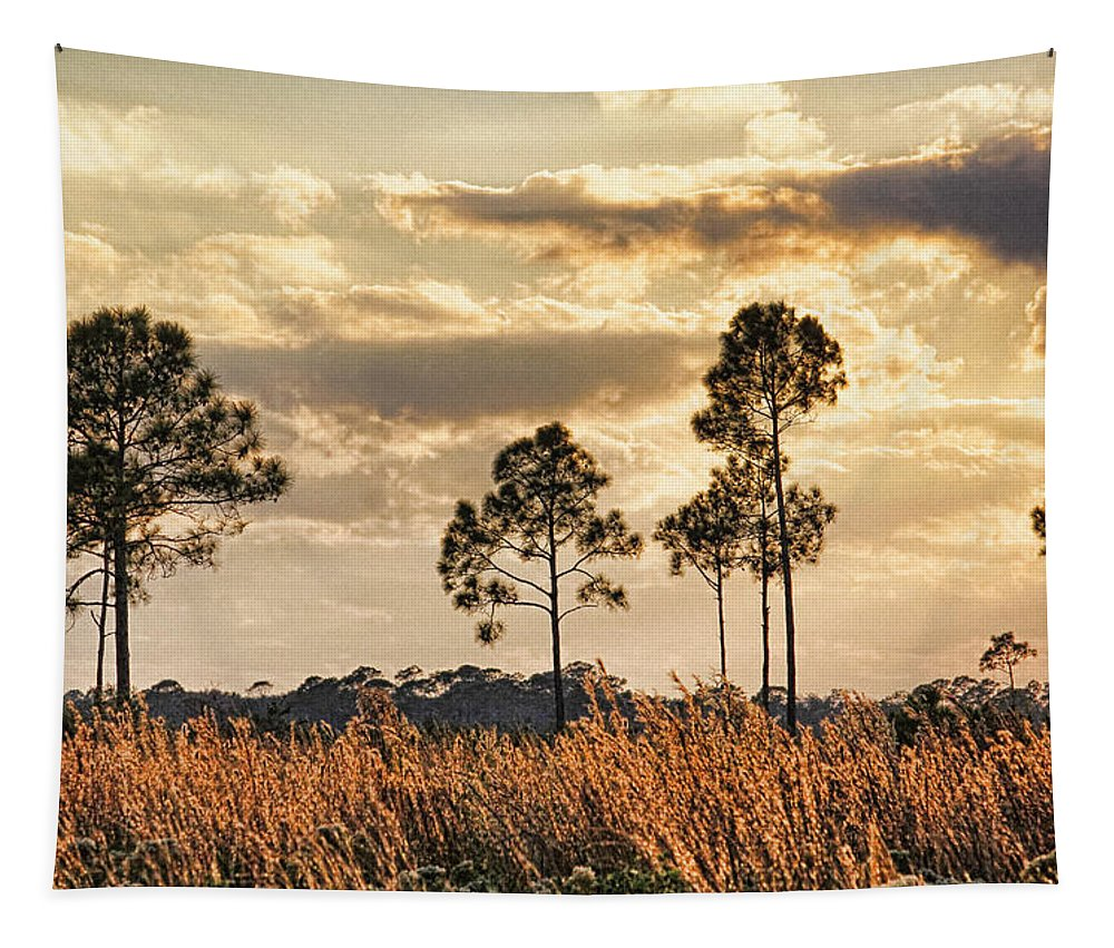 Pine Tapestry featuring the photograph Florida Pine Landscape By H H Photography Of Florida by HH Photography of Florida