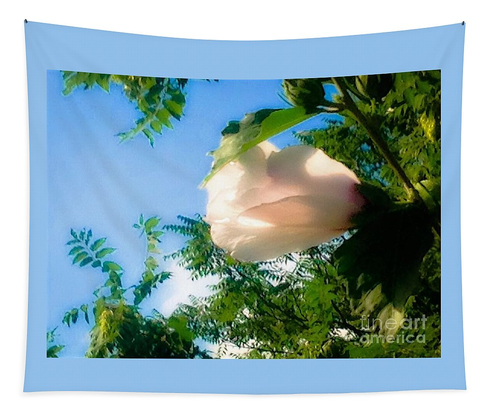 Floral Tapestry featuring the photograph Flower Against The Sky by Debra Lynch