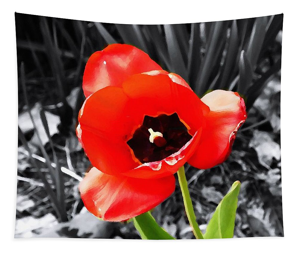 Flowers Tapestry featuring the photograph Flower As Art by Karl Rose