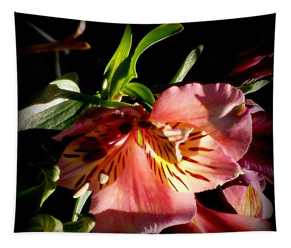 Flower Tapestry featuring the photograph Flower by Dianne Pettingell