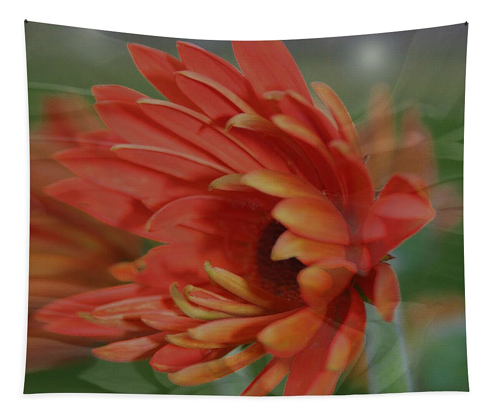 Flowers Tapestry featuring the photograph Flower Dreams by Linda Sannuti