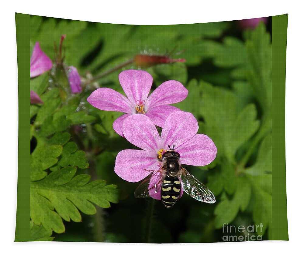 Anther Tapestry featuring the photograph Flower Fly On Stinky Bob by Marv Vandehey