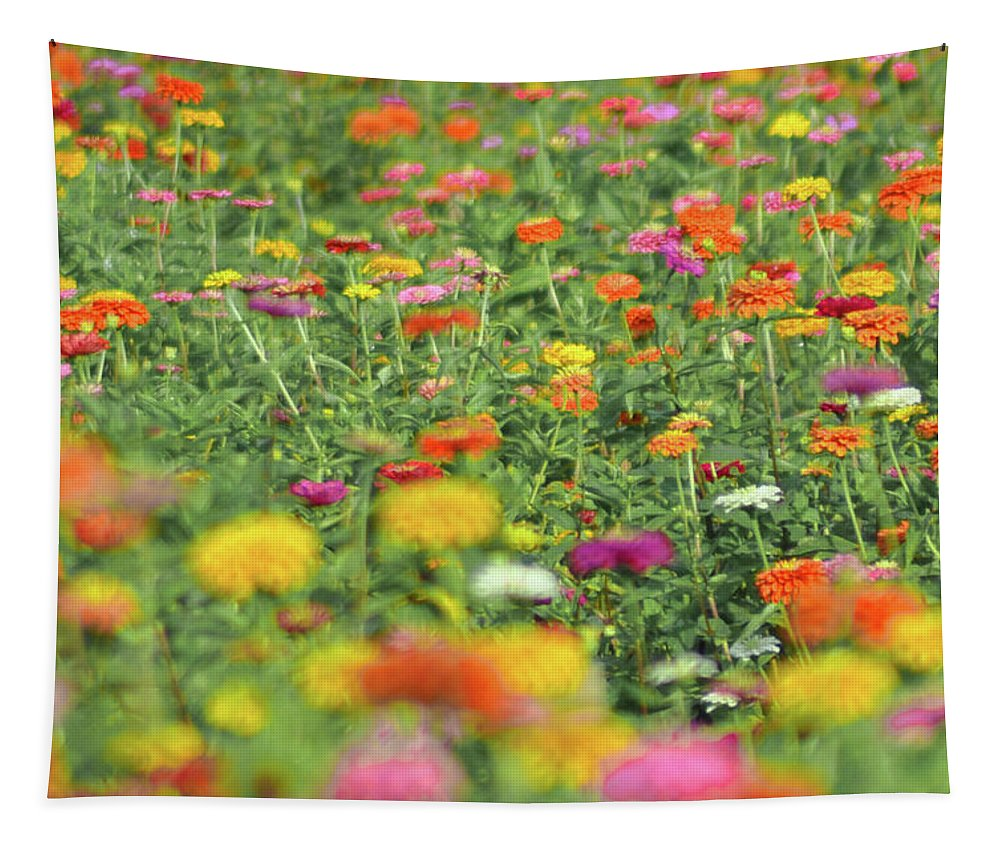 Flower Tapestry featuring the photograph Flower Garden by Bill Cannon