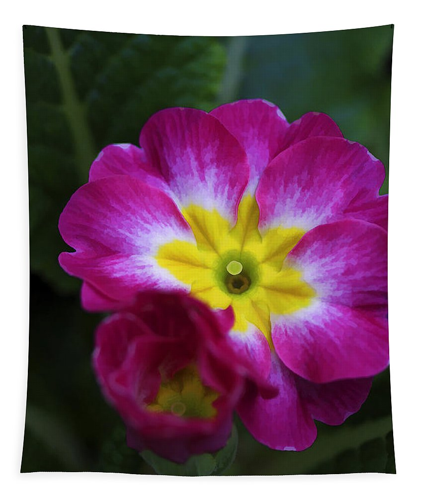 Flower Tapestry featuring the photograph Flower In Spring by Deborah Benoit