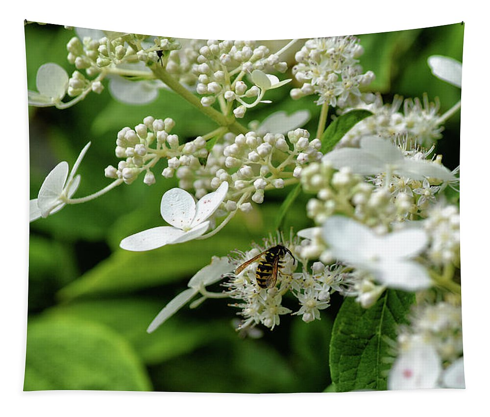 Flower Tapestry featuring the photograph Flower Power by Maria Keady