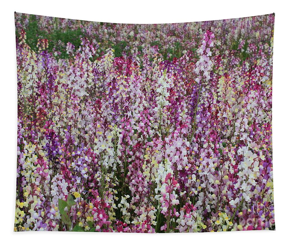 Field Of Flowers Tapestry featuring the photograph Flowers Forever by Carol Groenen