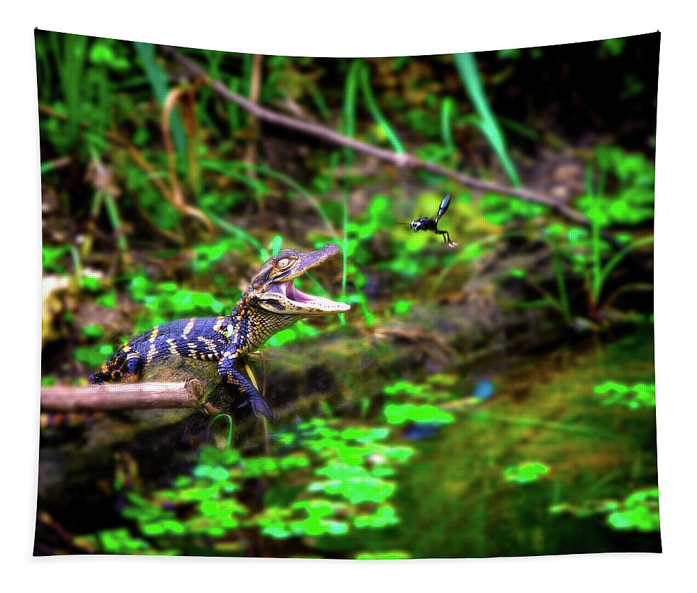 Alligator Tapestry featuring the photograph Fly Into My Mouth Please by Mark Andrew Thomas