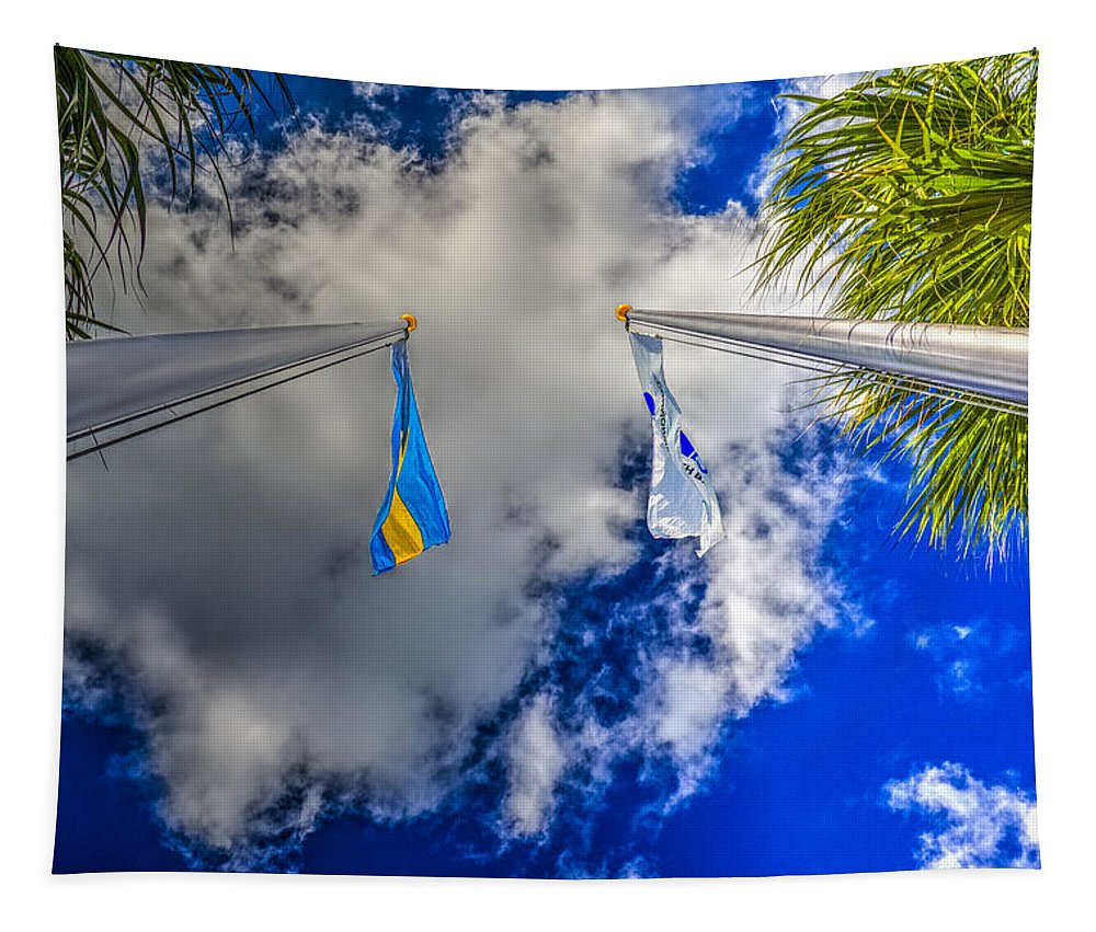 Flying High Tapestry featuring the photograph Flying High by Paul Wear