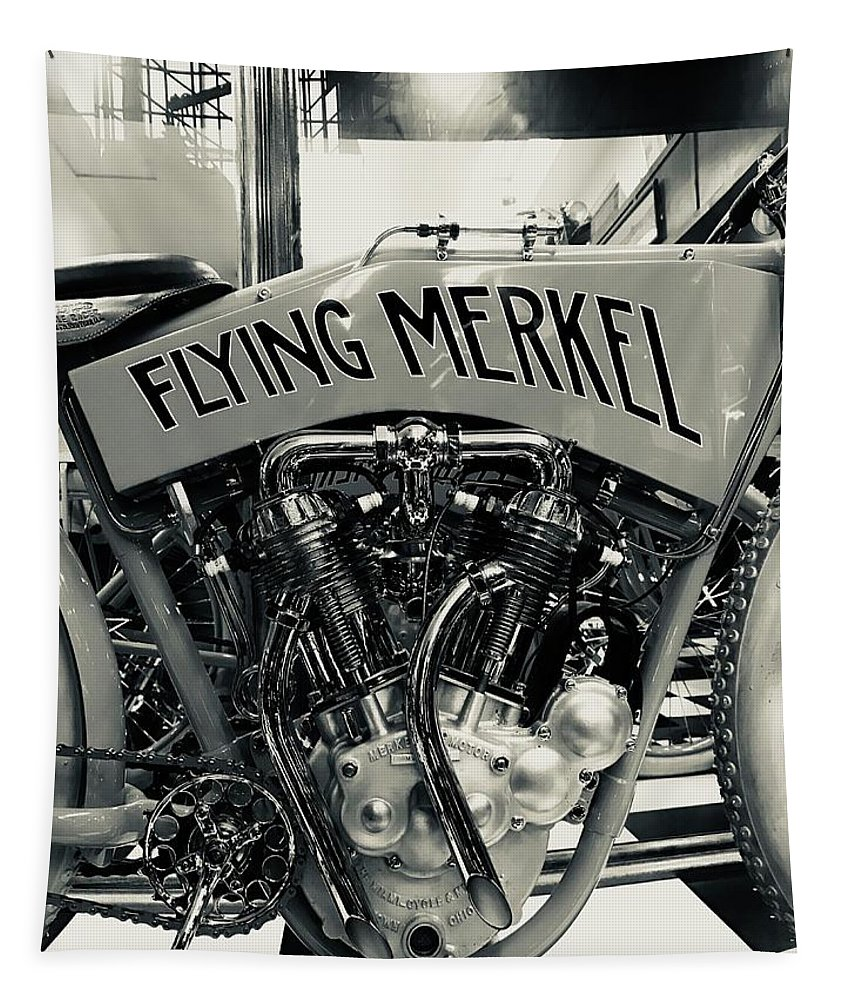 Portrait Tapestry featuring the photograph Flying Merkel by FlyingFish Foto