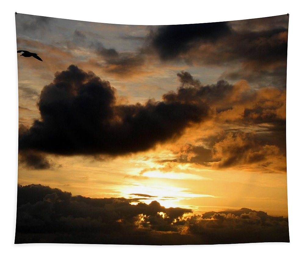 Seagull Tapestry featuring the photograph Flying Solo by Will Borden