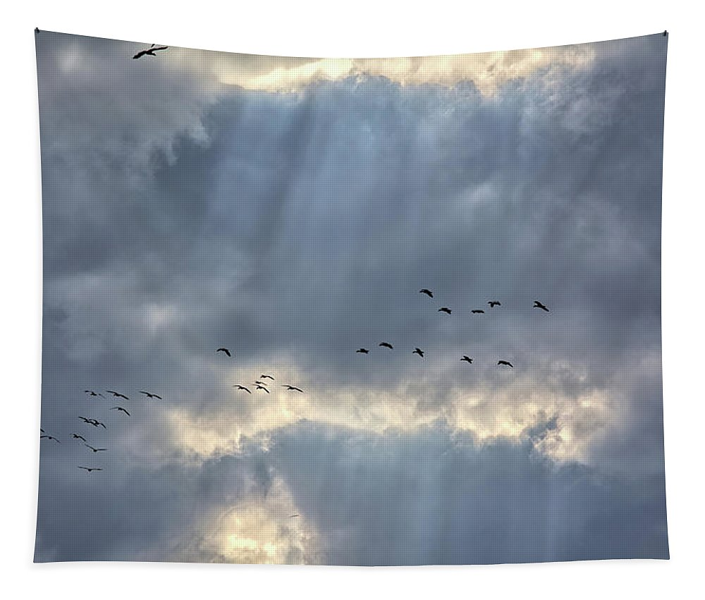 Geese Tapestry featuring the photograph Flying Through Sun Rays 3 by Bonfire Photography