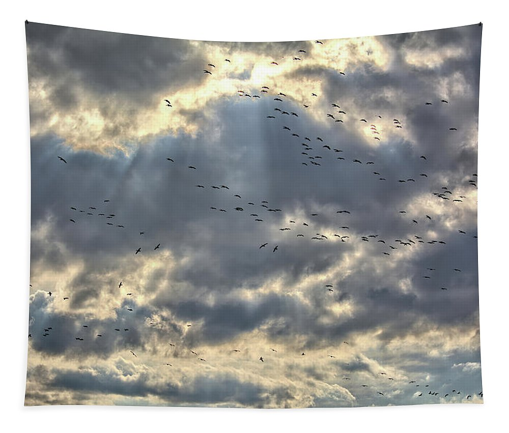 Geese Tapestry featuring the photograph Flying Through Sun Rays by Bonfire Photography