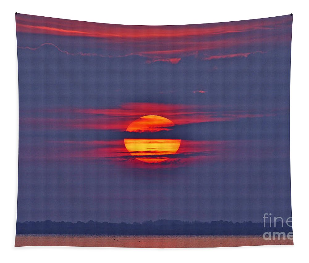 Huge Sun Tapestry featuring the photograph Focusing On The Sun by Davids Digits