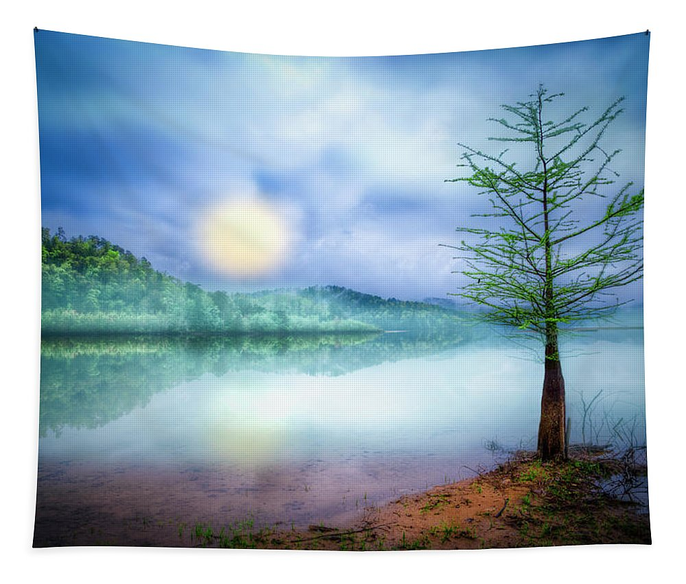 Appalachia Tapestry featuring the photograph Fog Over The Lake by Debra and Dave Vanderlaan