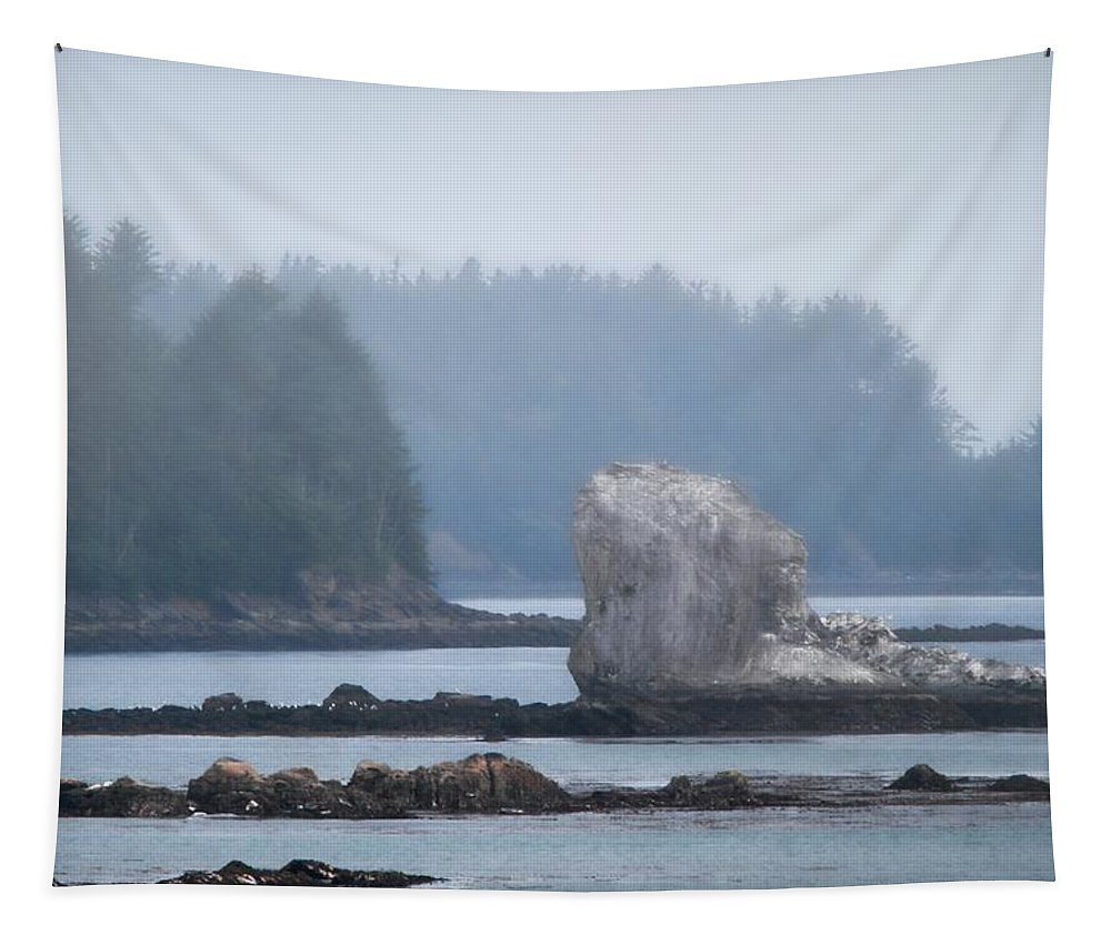 Foggy Morning On The Pacific Coast Tapestry featuring the photograph Foggy Morning On The Pacific Coast by Dan Sproul