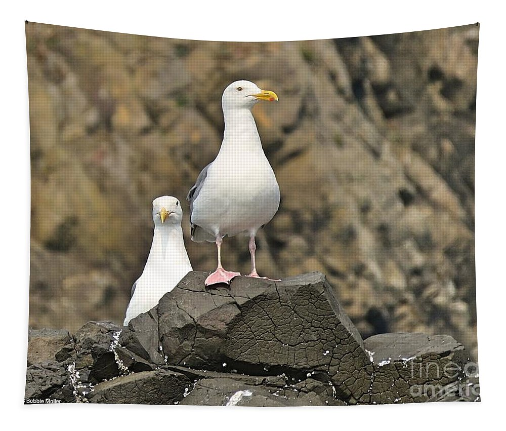 Bird Tapestry featuring the photograph Follow The Leader by Bobbie Moller
