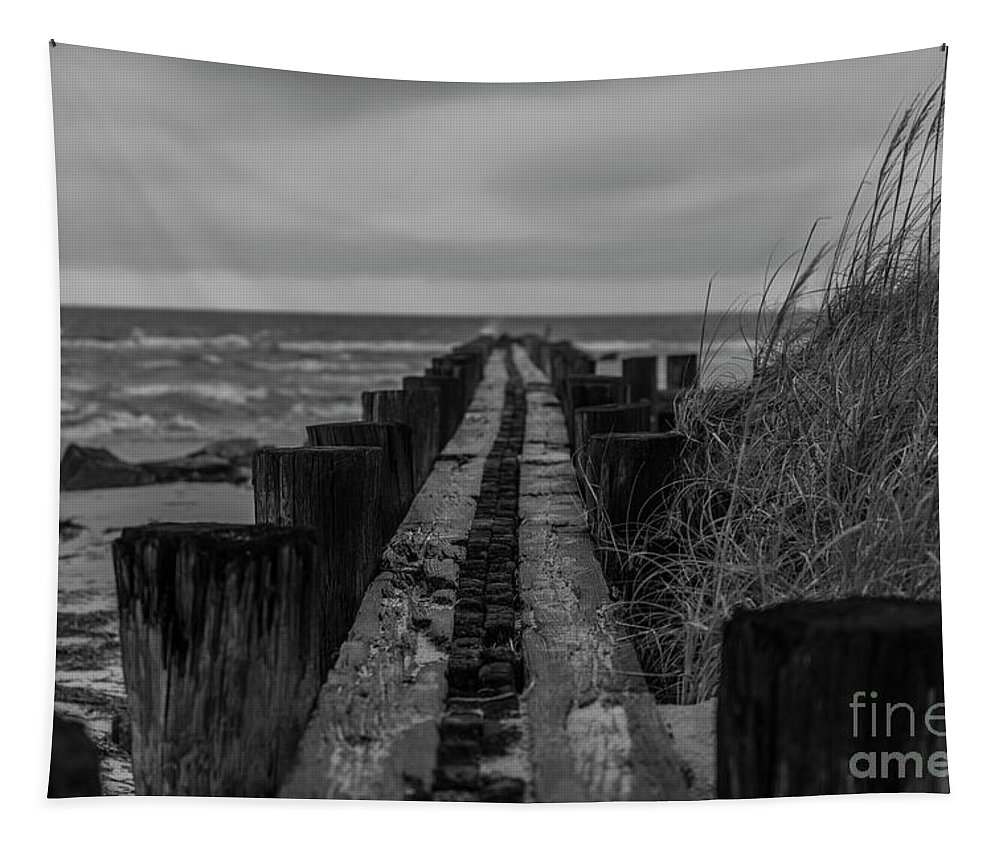 Folly Beach Tapestry featuring the photograph Folly Beach Anti Erosion Pier by Dale Powell