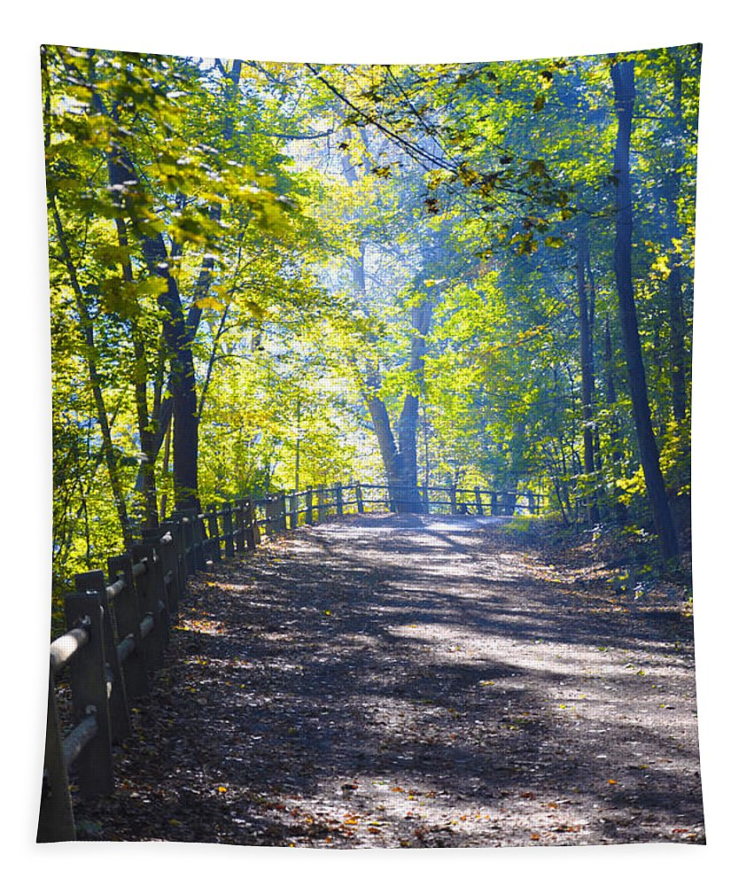 Wissahickon Tapestry featuring the photograph Forbidden Drive - Philadelphia by Bill Cannon