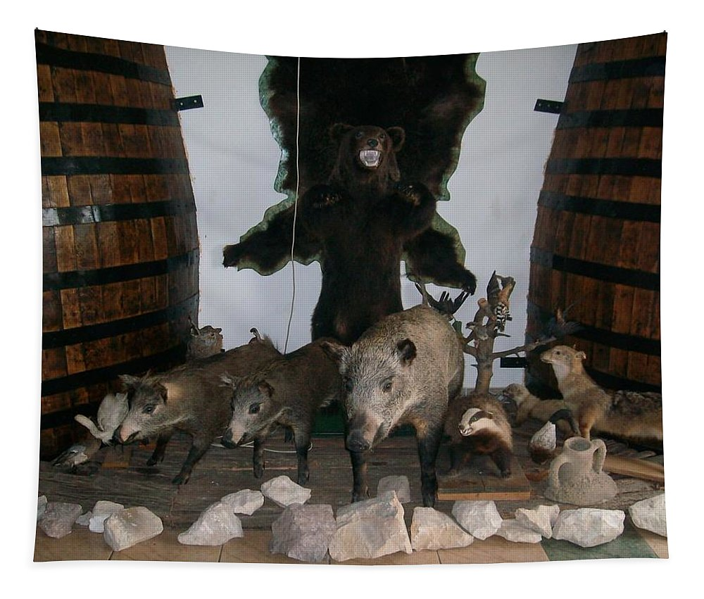 Animals Tapestry featuring the photograph Forest Friendship by Georgeta Blanaru