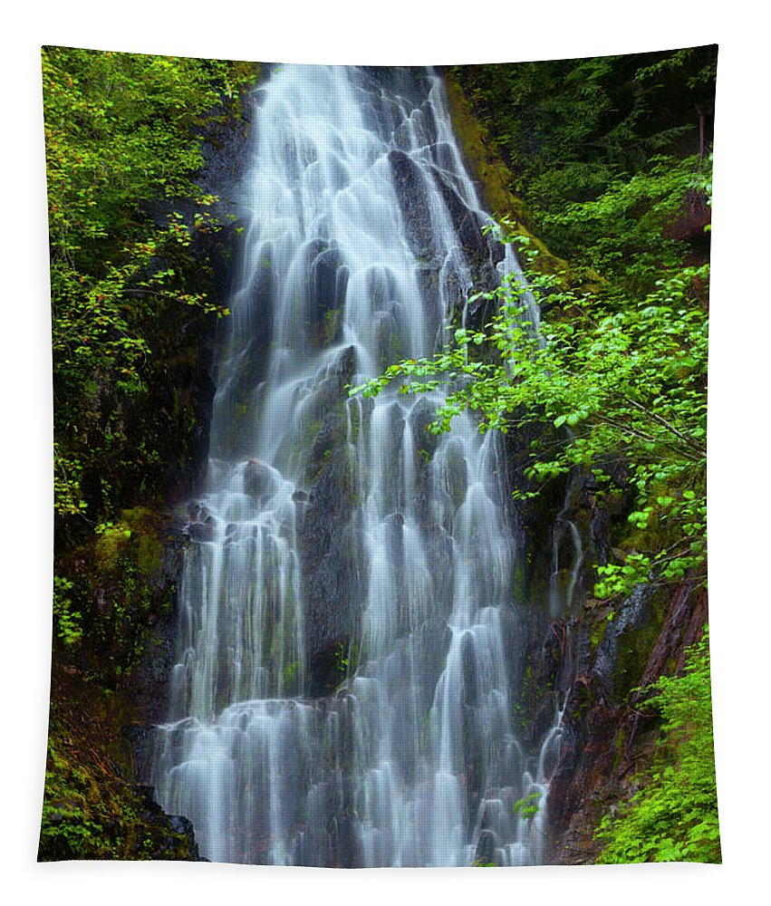Waterfall Tapestry featuring the photograph Forest Lace by Mike Dawson