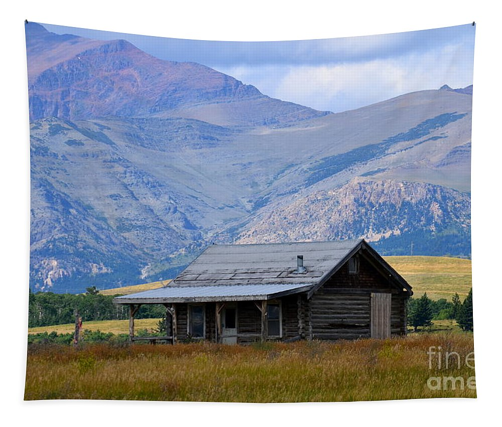 Cabin Tapestry featuring the photograph Forgotten Homestead by Jaunine Roberts