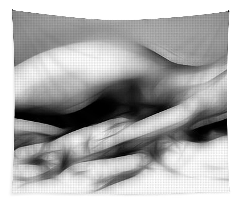 B&w Tapestry featuring the photograph Fractal Nude 4933 by Timothy Bischoff