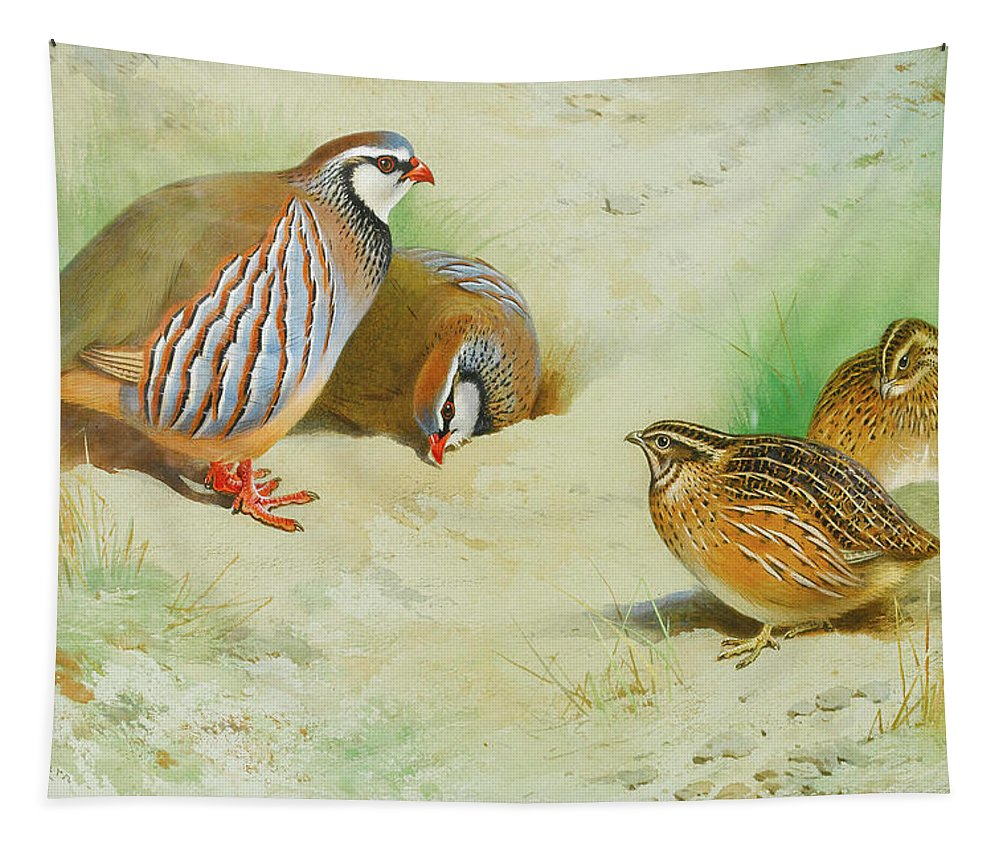 French Partridge Tapestry featuring the mixed media French Partridge By Thorburn by Archibald Thorburn