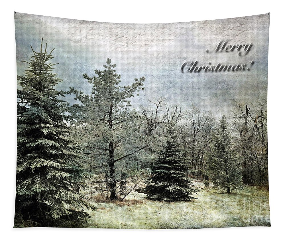 Christmas Tapestry featuring the photograph Frosty Christmas Card by Lois Bryan