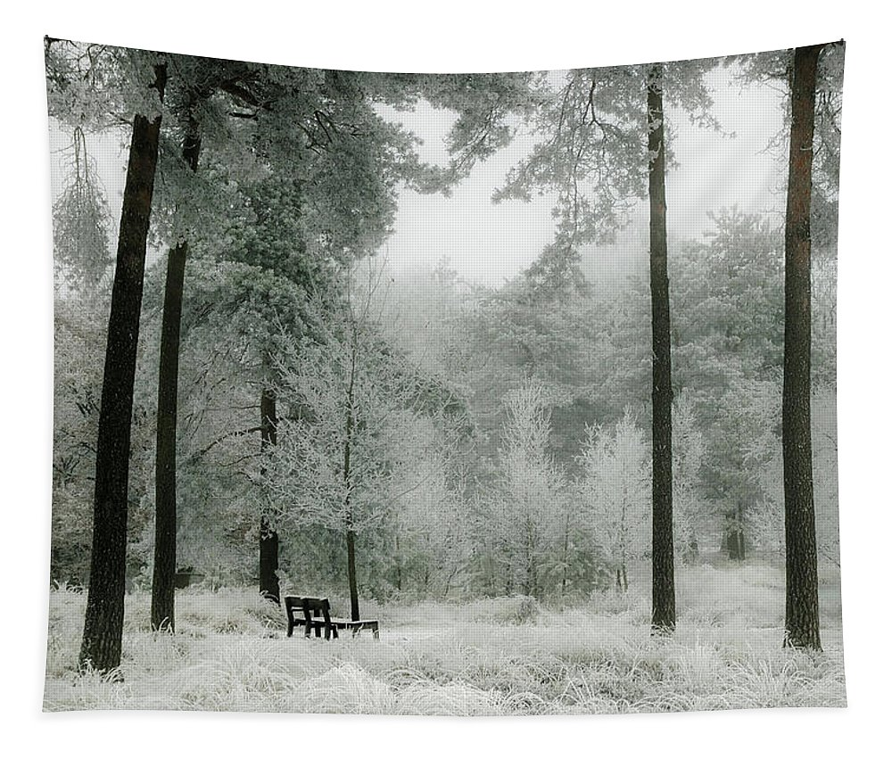 Frost Tapestry featuring the photograph Frosty Paradise by Matthias Groneveld