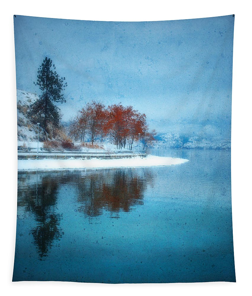 Blue Tapestry featuring the photograph Frosty Reflection by Tara Turner