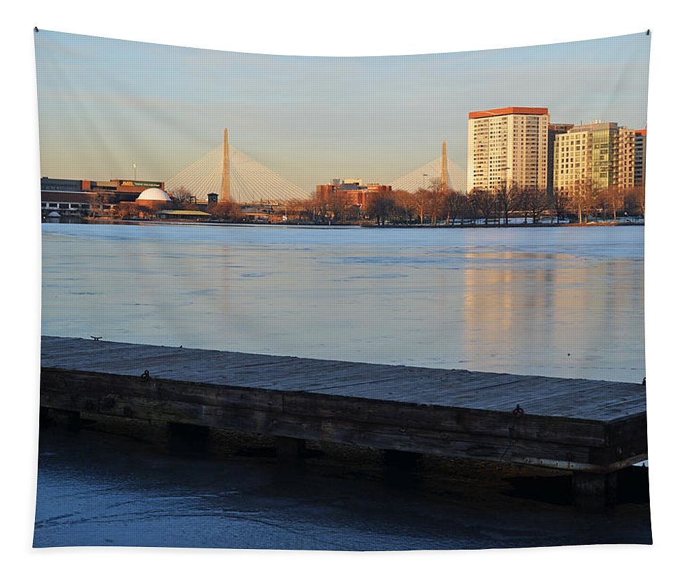 Boston Tapestry featuring the photograph Frozen Dock On The Charles River by Toby McGuire