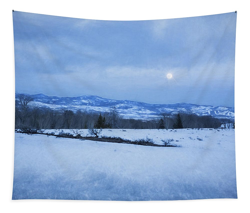 Full Moon Tapestry featuring the photograph Full Moon Over A Field Of Snow by Belinda Greb