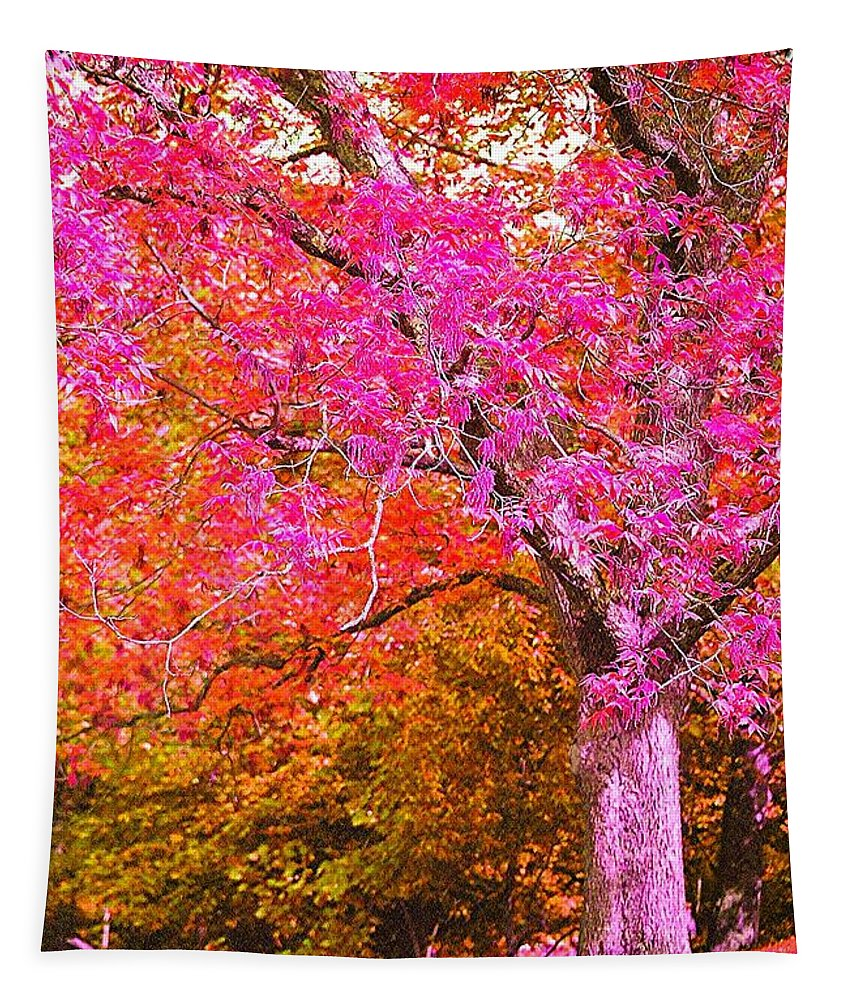 Fuschia Tapestry featuring the photograph Fuschia Tree by Nadine Rippelmeyer
