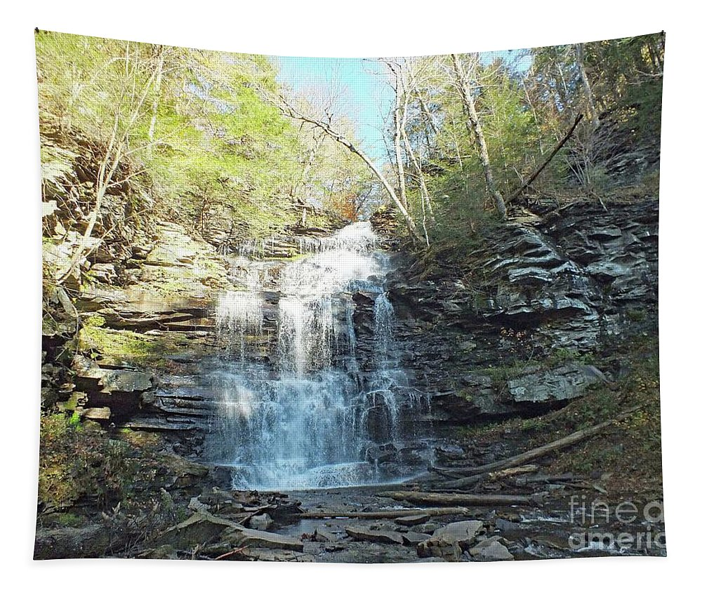 Ganoga Tapestry featuring the photograph Ganoga Falls 3 - Ricketts Glen by Cindy Treger
