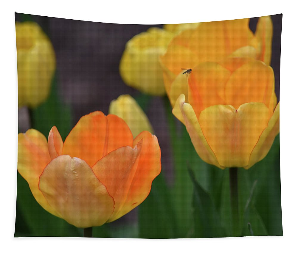 Tulips Tapestry featuring the photograph Garden Glory by Maria Keady