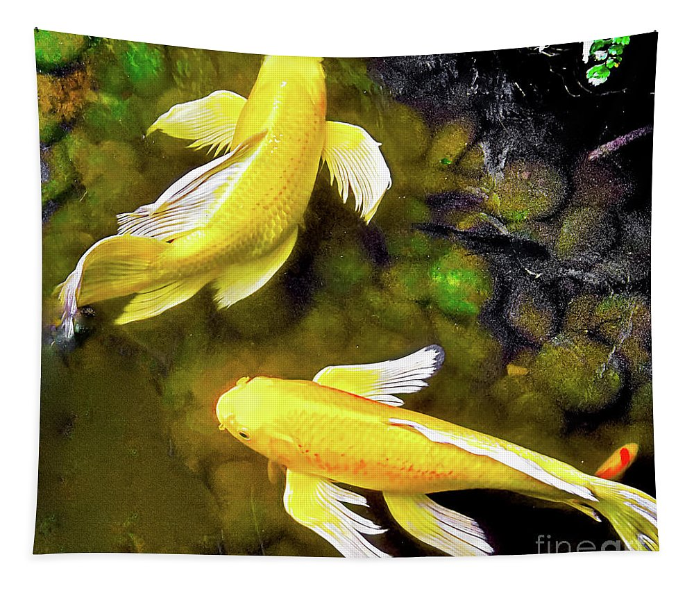 Goldfish Tapestry featuring the photograph Garden Goldenfish by James Fannin