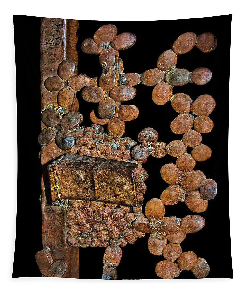 Rusty Tapestry featuring the photograph Indecipherable by Nikolyn McDonald