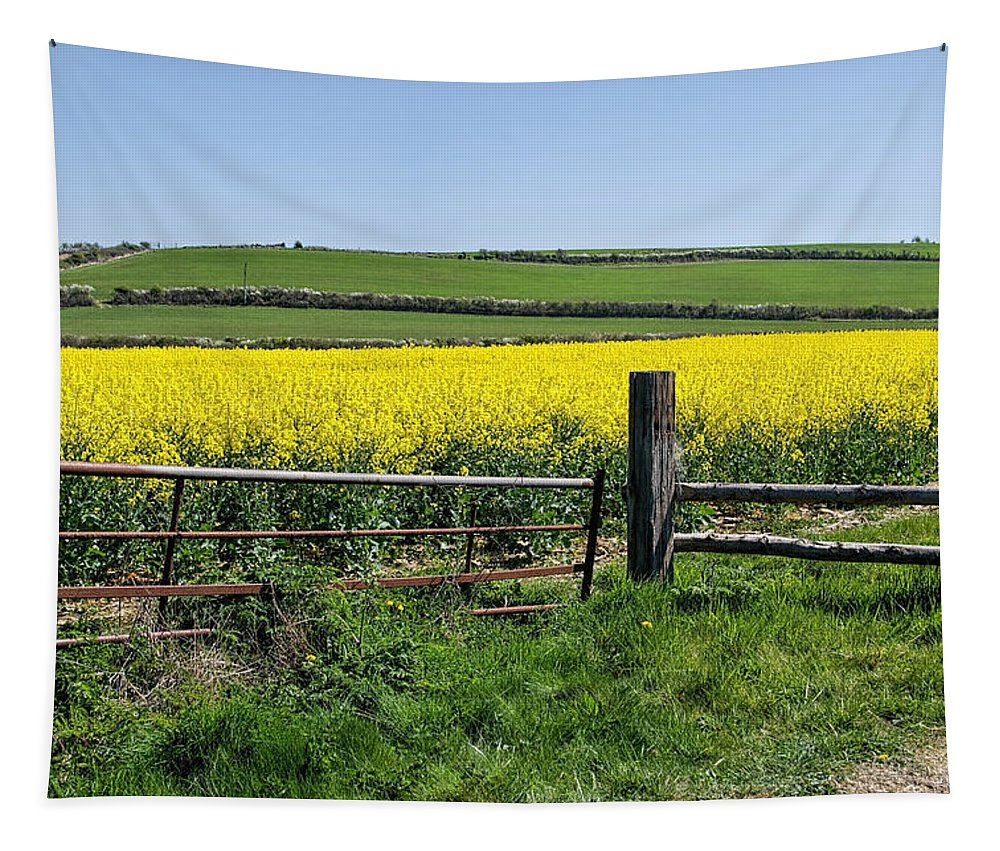 Rapeseed Tapestry featuring the photograph Gateway To Golden Fields by Susie Peek